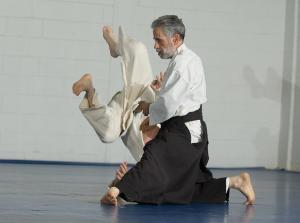 Linden Aikido